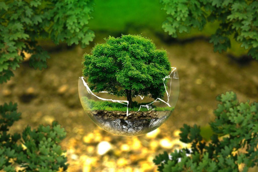 Bitte schützt unsere zerbrechliche Erde